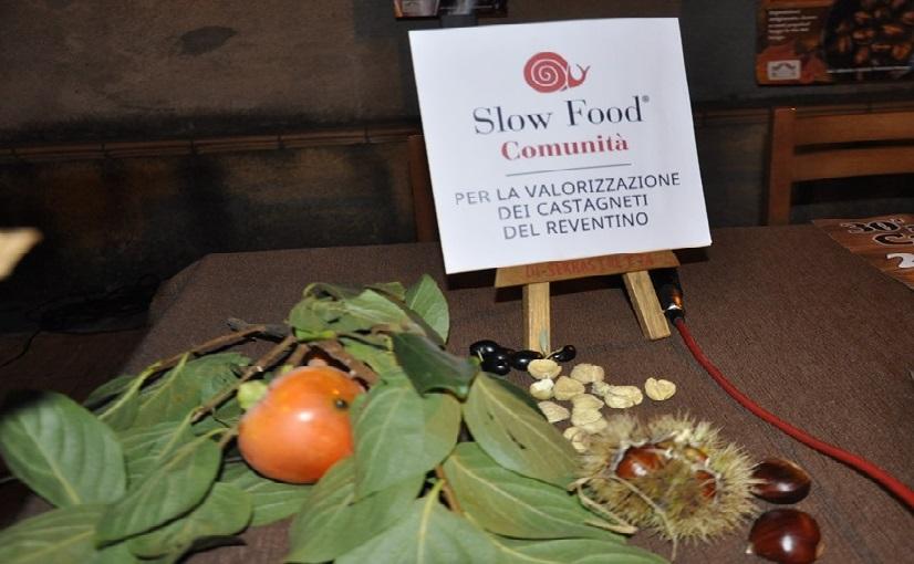 Serrastretta – Forum delle Comunità 2019 – 30 years of the Slow Food Manifesto